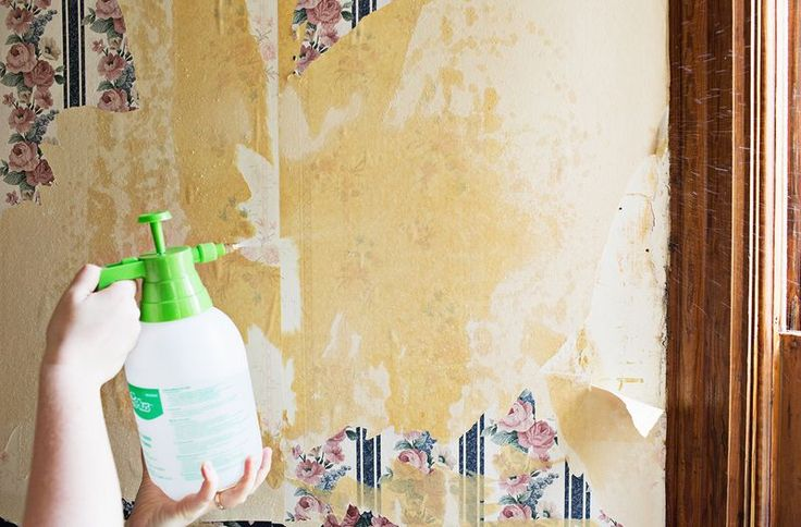 Flora Brothers Painting Steps To Remove Wallpaper Properly