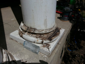 Rotted Wood Column