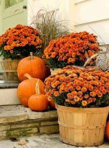 Halloween Pumpkins-Flowers Decor