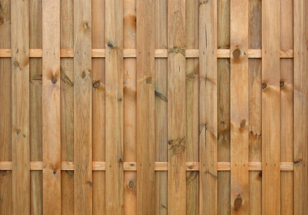 What Color Should I Paint My Privacy Fence Flora Brothers Painting